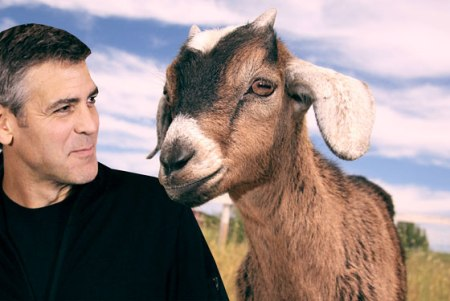 Clooney-Men-who-stare-at-goats